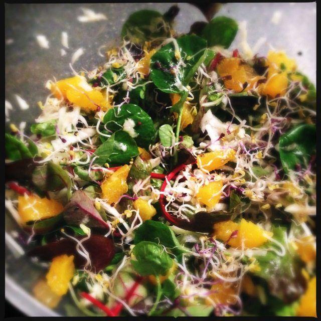 Recept voor salade met venkel, landkers, sinaasappel en kiemen.