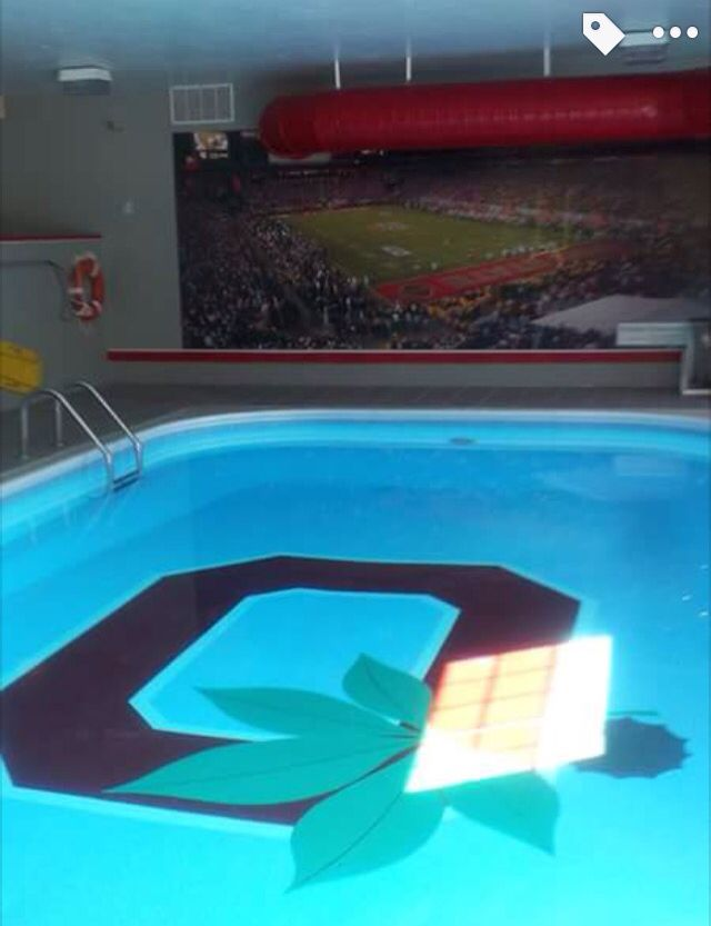 25 Unique Ohio State Rooms Ideas On Pinterest Ohio State Buckeyes Ohio State First Down And