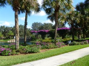 Twin Eagles in Naples has bundled golf on 2 championship courses. Buy any home and get your golf membership included. The options are wide ranging in style and price - there is a home for every golf lover in Twin Eagles!