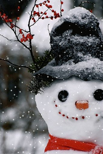 Wouldn't it be fun to have a White Christmas? And make this cute fellow!