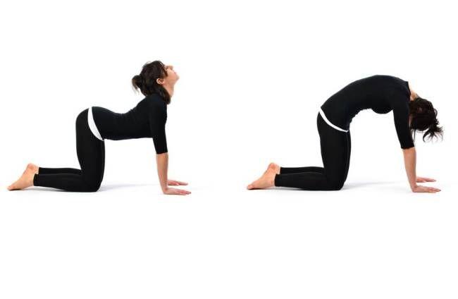 Yoga contro la cervicale - Posizione del gatto