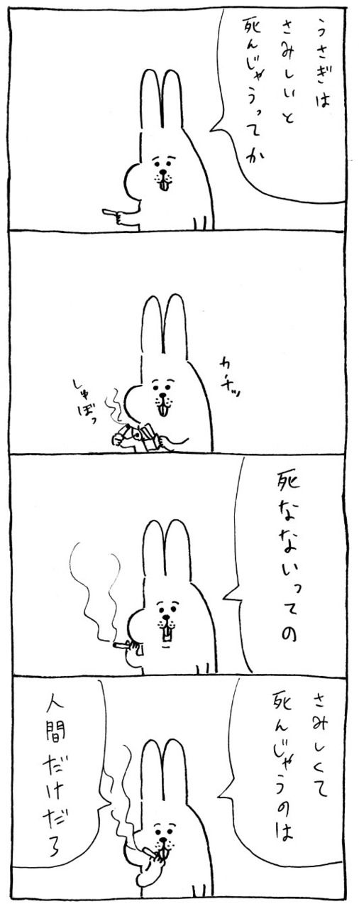 Rabbit says