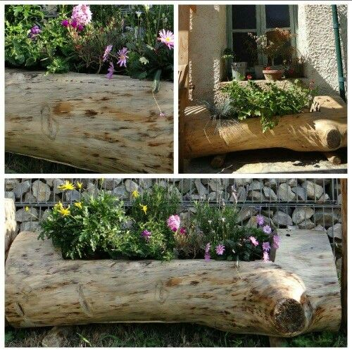 jardini re en pin celtis 1 jardini re creus e et finie dans le tronc de l arbre accueillera. Black Bedroom Furniture Sets. Home Design Ideas