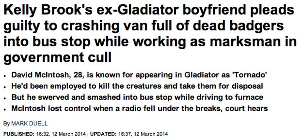 When badgers inexplicably got dragged into this. | The 30 Most Head-Scratchingly Bizarre News Headlines Of All Time