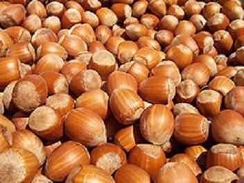 La noisette est un fruit à coupelle verte enserrée par des bractées. La coque ligneuse, qui contient l'amande comestible de couleur crème pelliculée de brun, passe du vert au marron bistre avec le temps. Elles se récoltent généralement dès la fin du mois d'août, au plus tard début septembre.