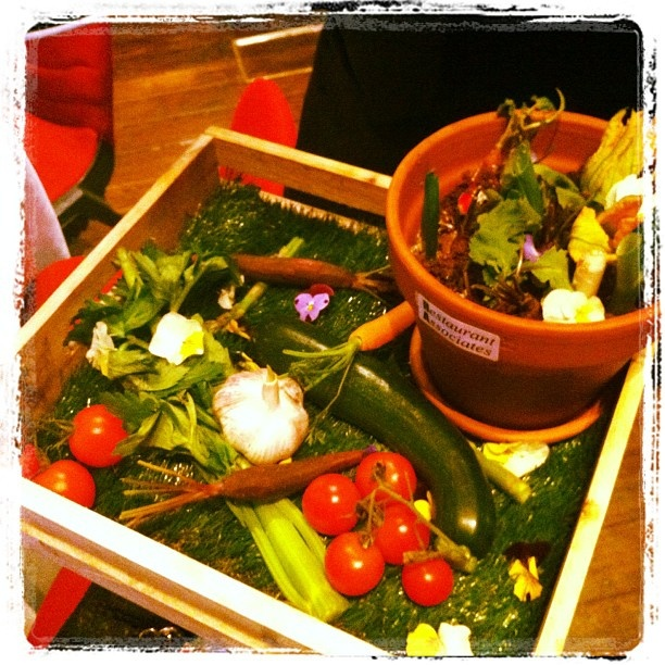 """So these were the canapés at the Sydney Business Awards Reception. Apparently, """"an edible garden""""..."""
