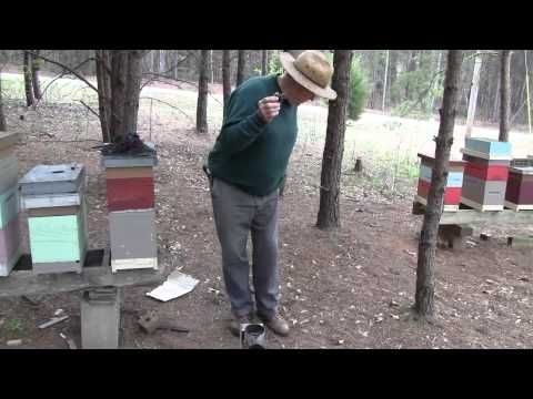 FatBeeMan on How To Light A Bee Smoker - Filmed by SoMDBeekeeper