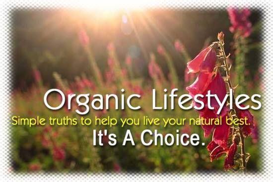 PENYEMBUHAN ALAMI: Pola Makan Sehat dengan Makanan Alami dan Organik ...