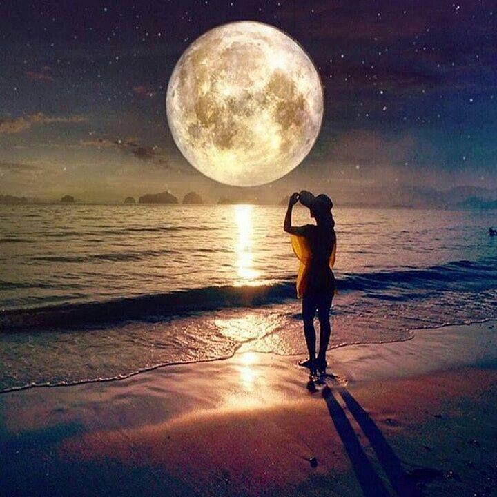 """""""Procuro semear otimismo e plantar sementes de paz e justiça. Digo o que penso com esperança. Penso no que faço com fé. Faço o que devo fazer com amor. Eu me esforço para ser cada dia melhor pois bondade também se aprende."""" Cora Coralina @olhardemahel #coracoralina @dotzsoh #sabedoria #escritora #olhardemahel #inspiration #books #fpolhares #poeta #poesia #livros #loucosporlivros #bookslover #inspiração #éprecisosaberviver #wayofliving #mododeviver #photo #knowledge #aprendizado #image…"""