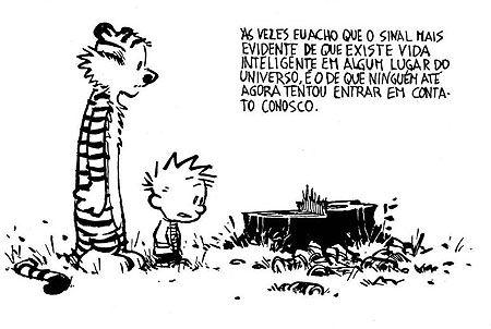 As tiras falam basicamente da visão de Calvin, um menino hiperativo de 6 anos e seu tigre de pelúcia Haroldo, que ganha vida quando não existem adultos por perto, sobre questões políticas, culturais, sua relação com os pais, amigos e professores, tudo com muito humor e sarcasmo.