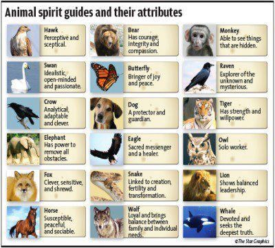 Animal Spirit Guides and their attributes.