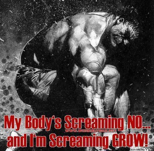My Body's ~