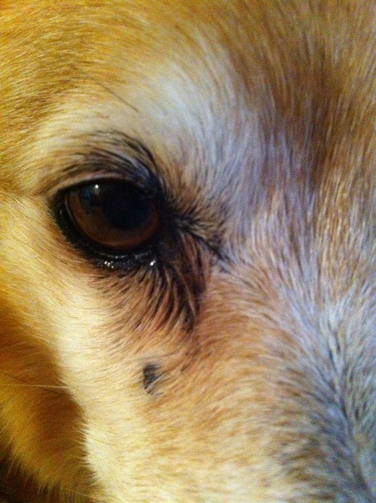 I spy with my little eye.