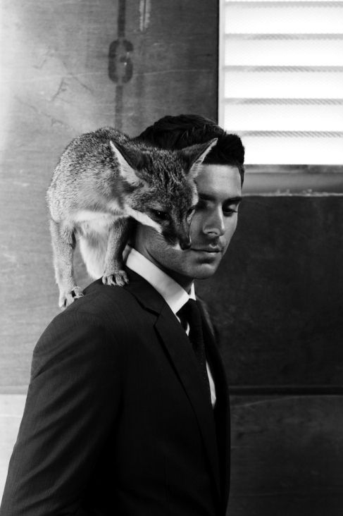 Zac Efron and a fox in the same picture should be illegal. It is just tooooo gorgeous. My heart melted