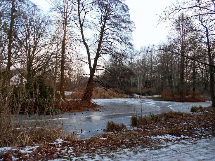 Tiergarten, Berlin, Germany Ice, Lake