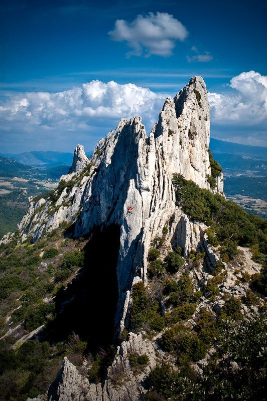Denteilles de Montmirail, Vaucluse, Provence, France.