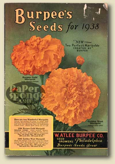 Burpee's Seeds for 1938