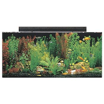 SeaClear Rectangular 40 Gallon Aquarium Combos