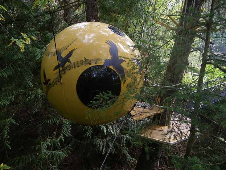 sleeping in a sphere in the forest