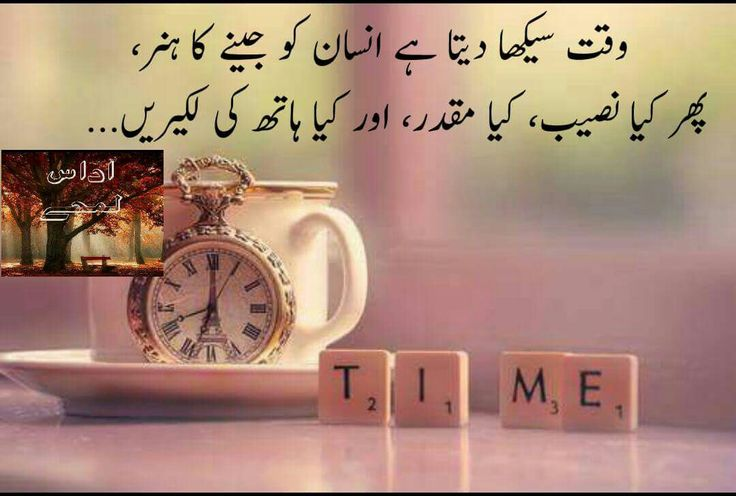 Homework Quotes In Urdu About Life Laneysatthelakes Com Essays Papers