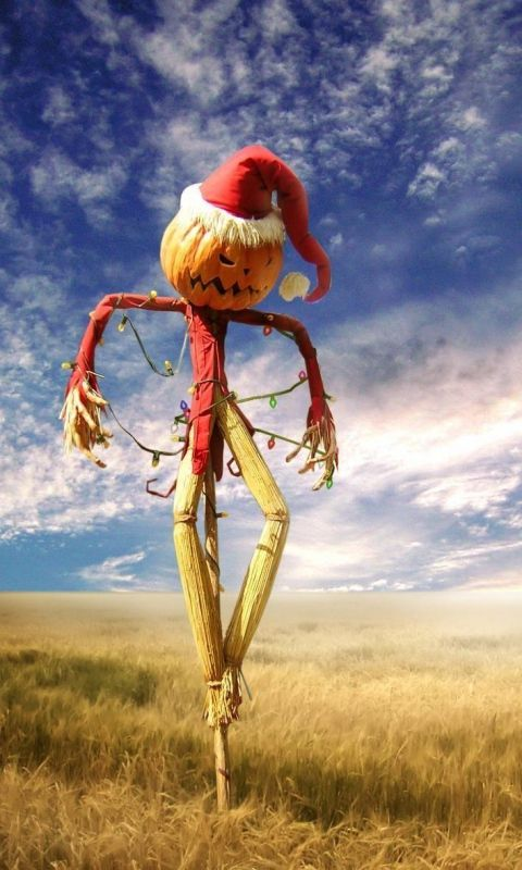480x800 Wallpaper halloween, holiday, scarecrow, sky, turkey
