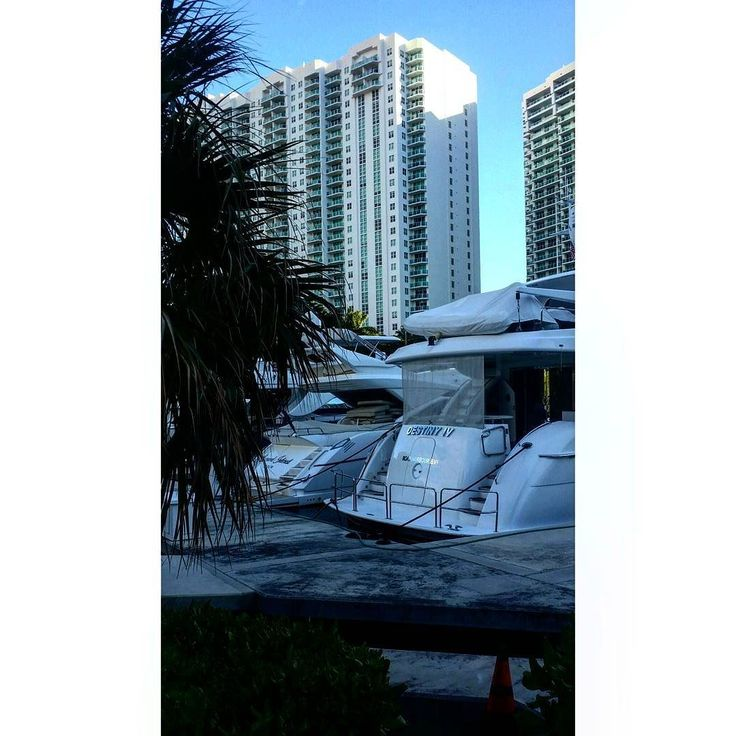 #miami #aventura #williamsisland #ilovemiami #southflorida #palmtrees #condo #ilovethisplace #blueskies #boat #watersports #water #yacht #instagood #instagram #nature #travel #instatravel #instapic #luxury #vacation #pier #dock by wade0518