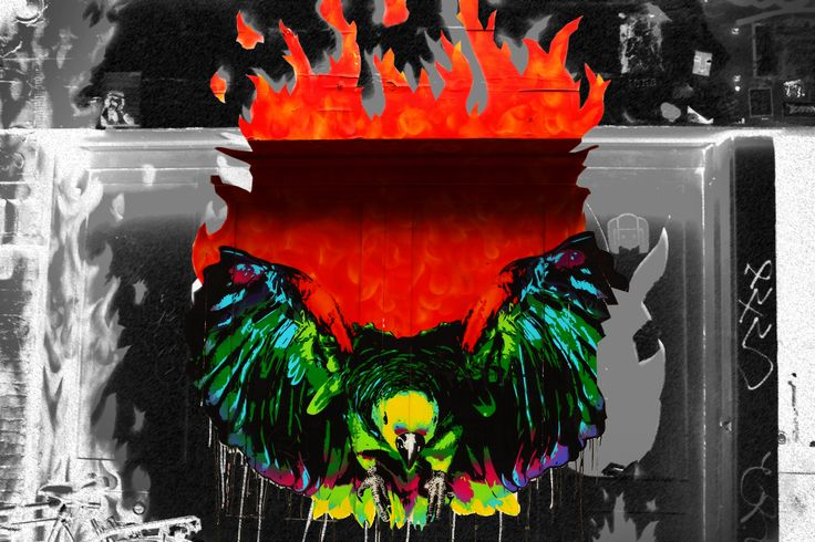 The Flaming Bird Amsterdam. Photoartists.ca All images are available for purchase. We print on photographic paper or watercolour paper. We also print on canvas and cotton for stretchers. If interested in any of my works please email me at Brian@photoartists.ca Images are also available in trip tics and doubles (one image cut into 2 or 3 and gallery wrapped) to be displayed together.