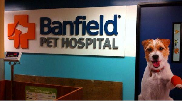 Mama Be Frugal Free Banfield Pet Hospital Office Visit Consulta Pets Pet Names Dog Cat