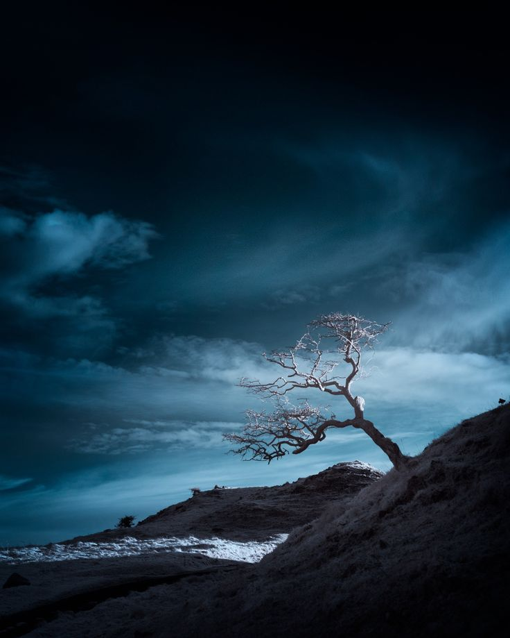 ѱ out of darkness comes creation / blue by Andy Lee on 500px