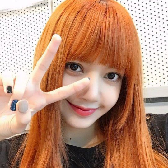 256 Best Lisa Blackpink Images On Pinterest Blackpink