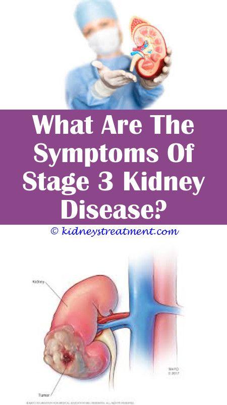 Kidney Disease And Protein Shakes Erythromycin Bacterial Kidney