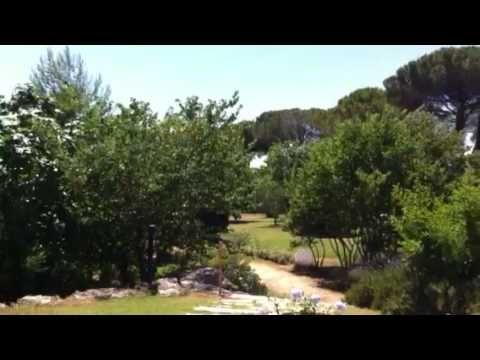 last summer at pool in Villa Acquaviva    Estate in Piscina a Villa Acquaviva