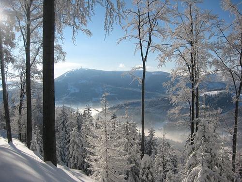 near Szczyrk by Nathan Owens, via Flickr