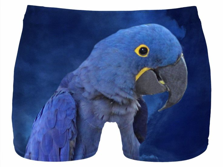 Check out my new product https://www.rageon.com/products/hyacinth-macaw-men-underwear?aff=BWeX on RageOn!