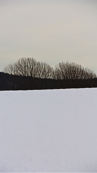 Maridalen. Photo: Åse Margrethe Hansen, 2013
