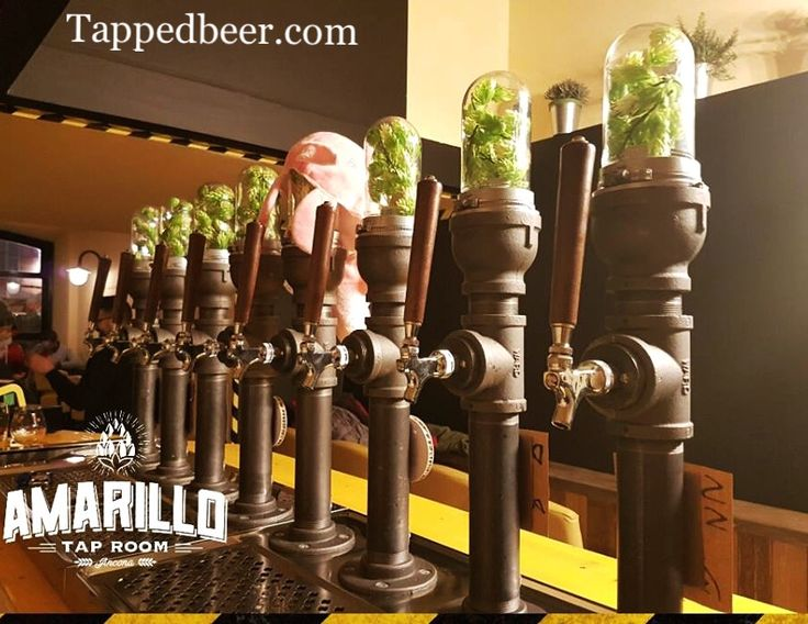 Hops Everywhere ! Glass And Iron pipe draft tap beer tower. Custom draft beer wine systems. Iron Industrial Glass Hops www.tappedbeer.com