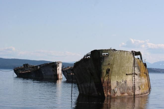 """Great shot of """"The Hulks."""" Powell River's historic breakwater of 10 hulks - a must see for history buffs. The sea lions and commorants love hanging around them too. Photo Credit: Ray Regnier"""