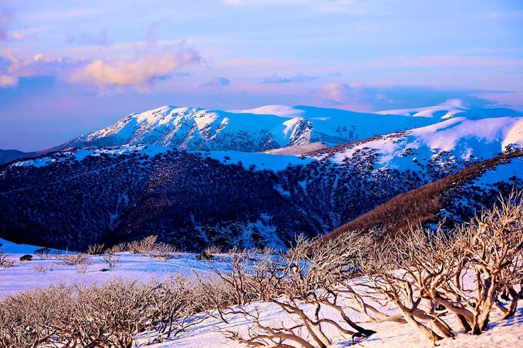 Snow Australia - alpine sunset with snow capped mountains.  Falls Creek ski resort in Victoria #snowaus
