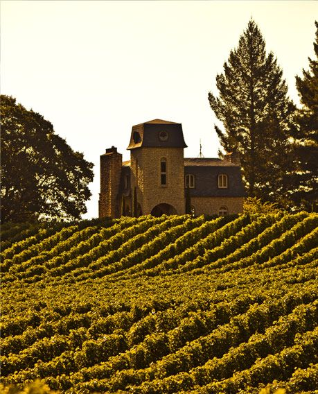 17 Best Images About Wine Country Vineyards In Napa