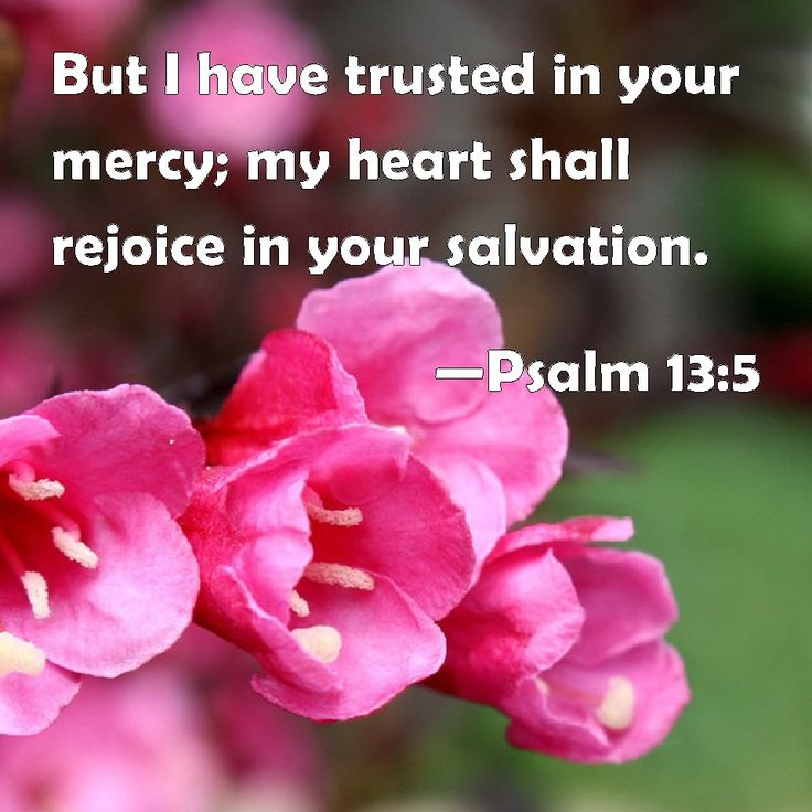 Psalm 13:5 But I have trusted in your mercy; my heart shall rejoice in your salvation.
