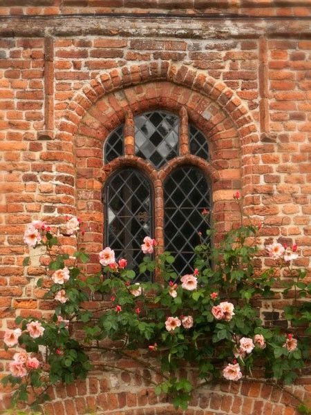 arched window, old brick, flowers
