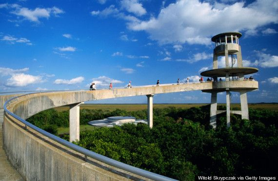 Florida Shark Valley Observation Tower (spot alligators and ride a tram to get there) shark valley