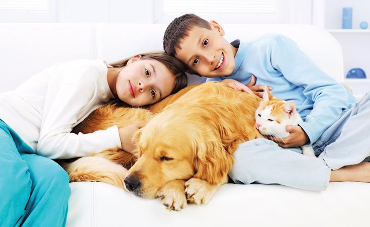Pets Australia Local Hot Free Classifieds Colourful ADs Special Services  www.thehotwire.org