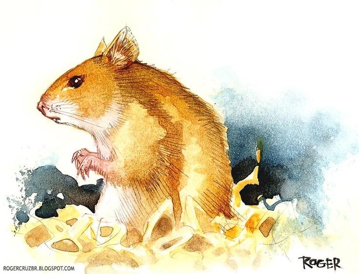 X art hamster