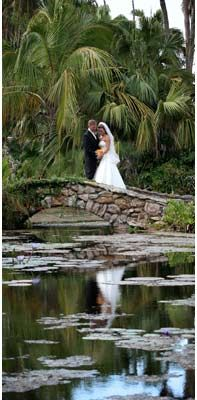 1000 images about treasure coast venues on pinterest - Mckee botanical gardens vero beach ...