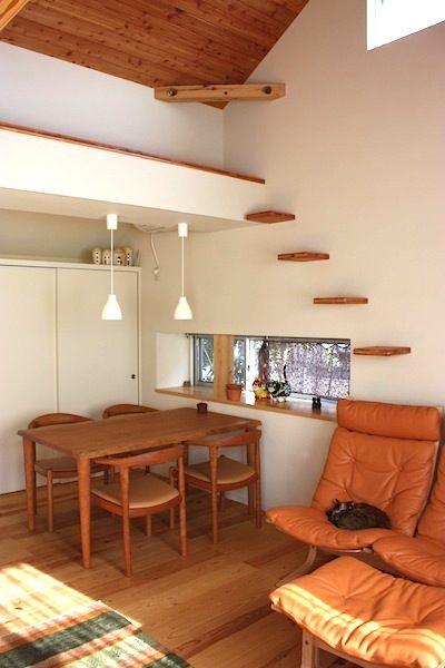 猫と暮らす家・家具