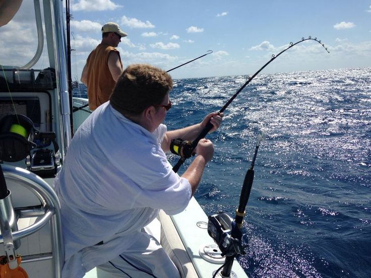 26 best miami light tackle fishing charter images on for Miami fishing supply