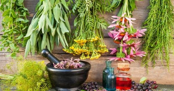 Healing Herbs That Are More Efficient Than Conventional Medication