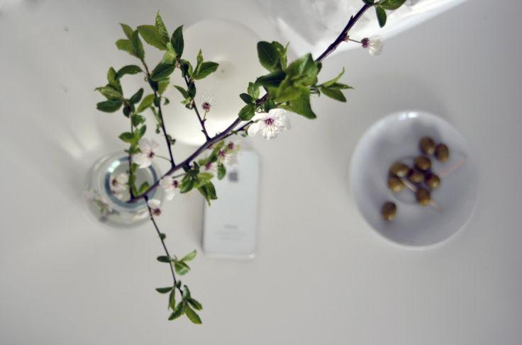 White #flowers