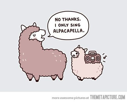 What do you call it when a llama sings with no music? Alpacapella